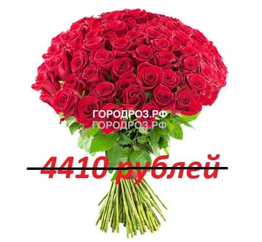 Букет из 49 красных роз