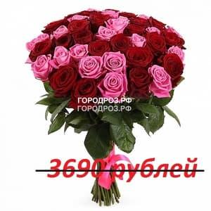 Букет из 41 красной и розовой розы