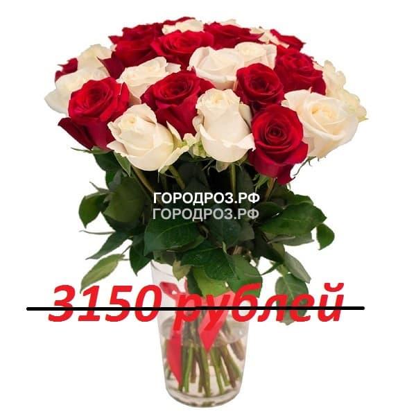 Букет из 35 красных и белых роз