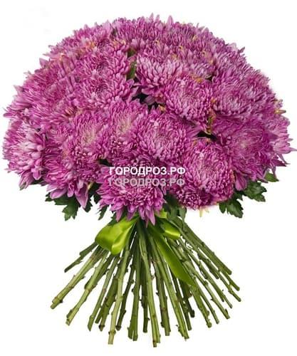 Букет из 51 розовой одноголовой хризантемы