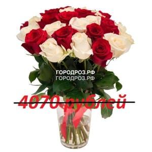 Букет из 37 красных и белых роз