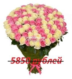 Букет из 65 розовых и белых роз