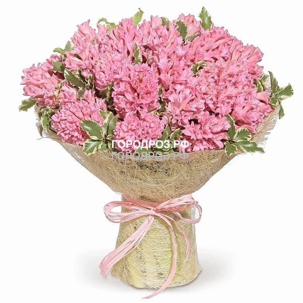 Букет из 35 розовых Гиацинтов