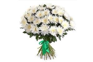 Букет из 51 белой одноголовой хризантемы