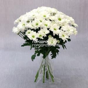 Букет из 9 белых кустовых хризантем