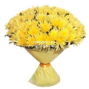 Букет из 51 желтой одноголовой хризантемы
