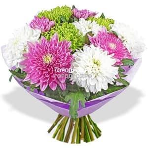 Букет из 19 одноголовых хризантем Микс Разноцвет