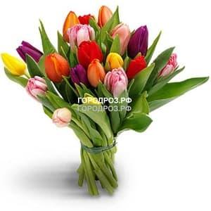 Букет из 25 Тюльпанов Микс разноцветные