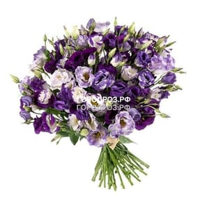 Букет из 51 фиолетовой Эустомы
