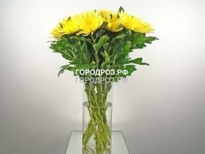 Букет из 9 желтых одноголовых хризантем