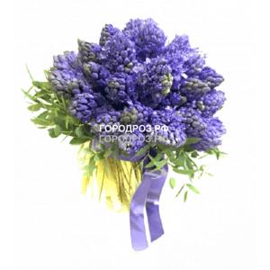 Букет из 25 фиолетовых Гиацинтов