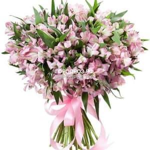 Букет из 51 розовой альстромерии