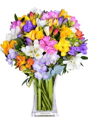 Букет из 55 Фрезий Микс разноцветные
