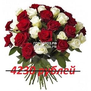 Букет из 47 красных и белых роз