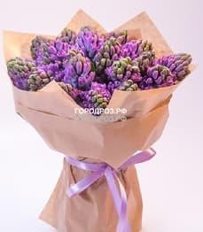 Букет из 19 фиолетовых Гиацинтов