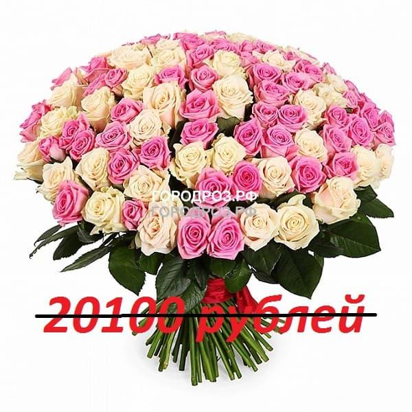 Букет из 201 розовой и белой розы