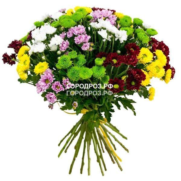 Букет из 19 кустовых хризантем Микс Разноцвет