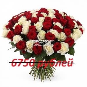 Букет из 75 красных и белых роз