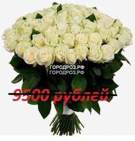 Букет из 95 белых роз