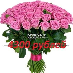 Букет из 43 розовых роз