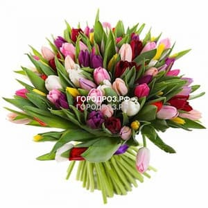 Букет из 51 Тюльпана Микс разноцветные