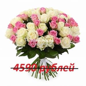 Букет из 51 розовой и белой розы