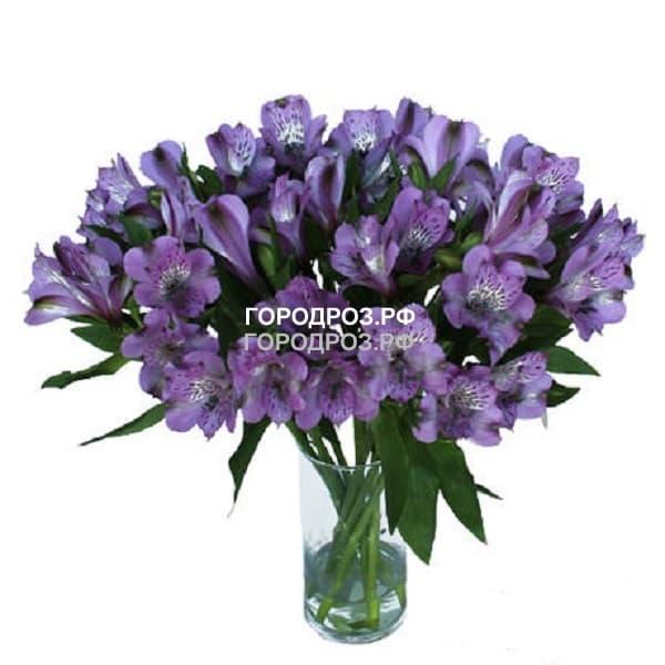 Букет из 29 фиолетовых альстромерий