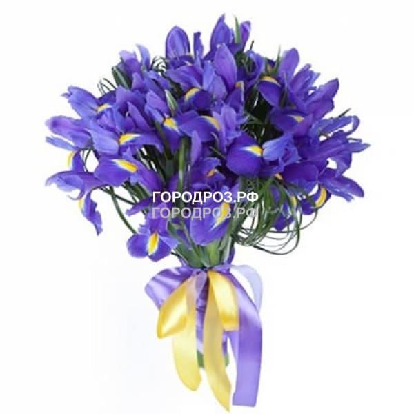 Букет из 25 фиолетовых Ирисов