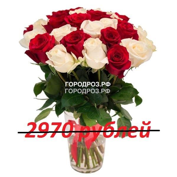 Букет из 33 красных и белых роз