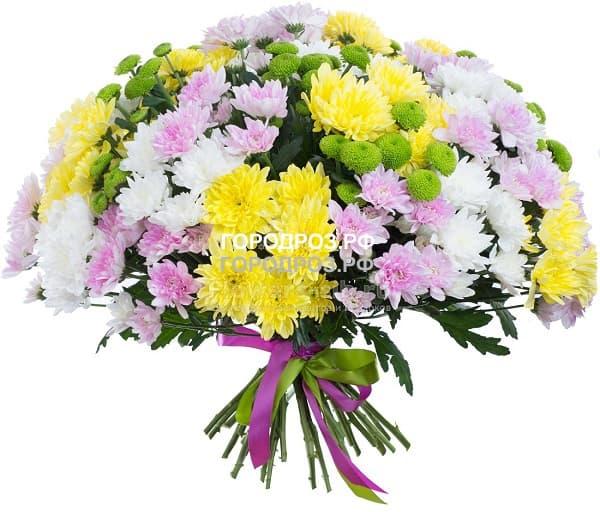 Букет из 35 кустовых хризантем Микс Разноцвет