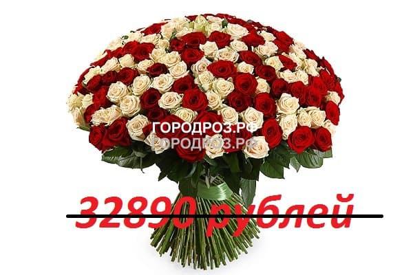 Букет из 301 красной и белой розы