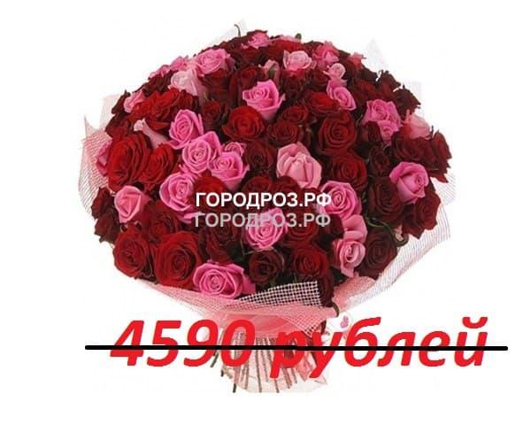Букет из 51 красной и розовой розы