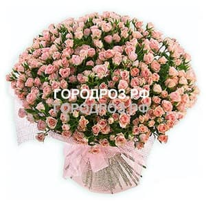 Букет из 101 нежно-розовой кустовой розы