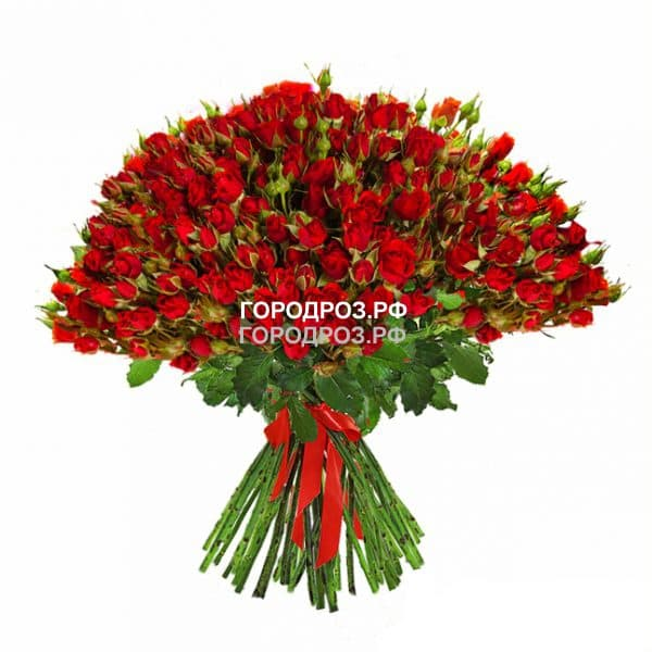 Букет из 101 красной кустовой розы