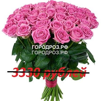 Букет из 37 розовых роз