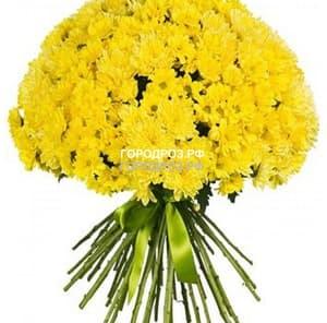 Букет из 35 желтых кустовых хризантем