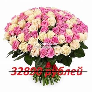 Букет из 301 розовой и белой розы