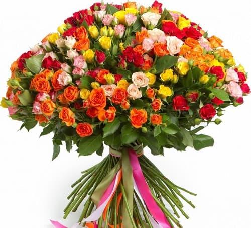 Купить кустовые розы