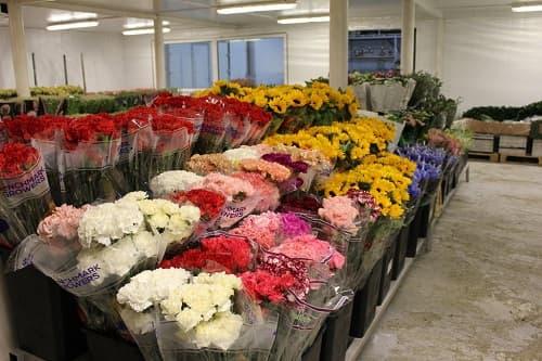 Купить альстромерии, хризантемы, тюльпаны, кустовые розы в Москве недорого
