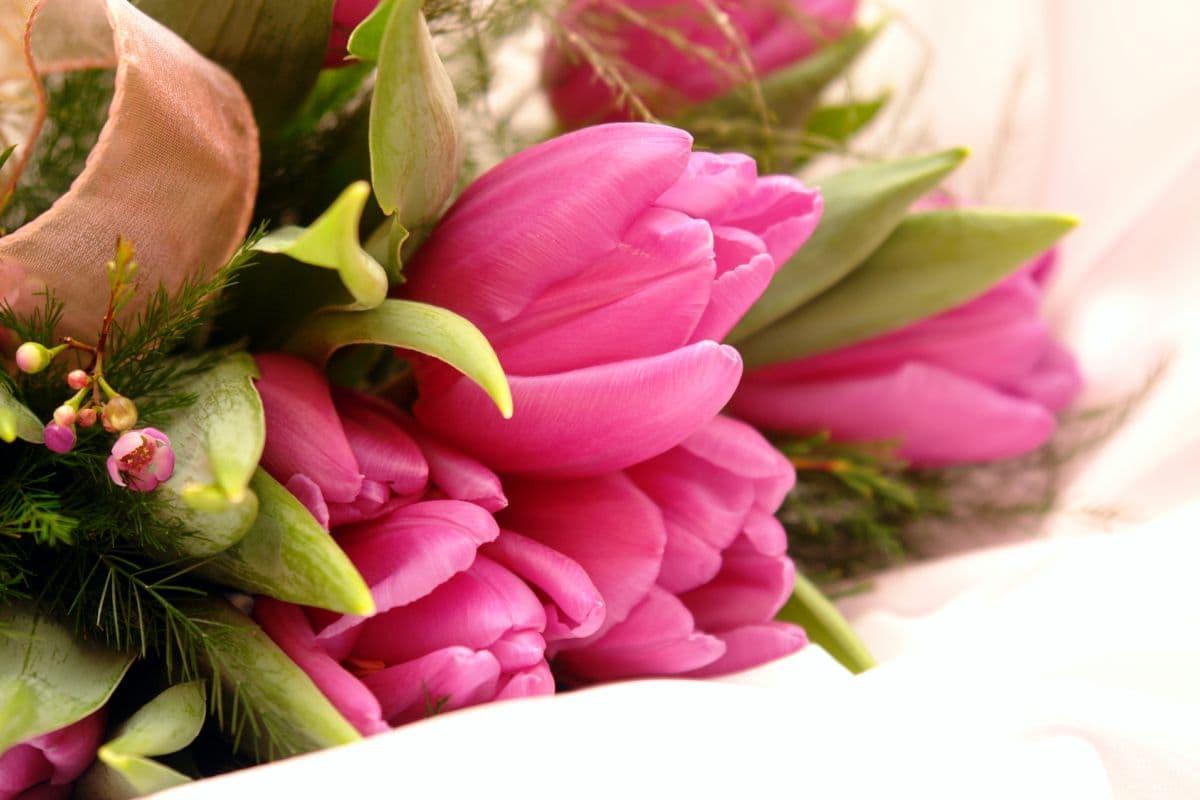 Доставка цветов на «Цветной бульвар»