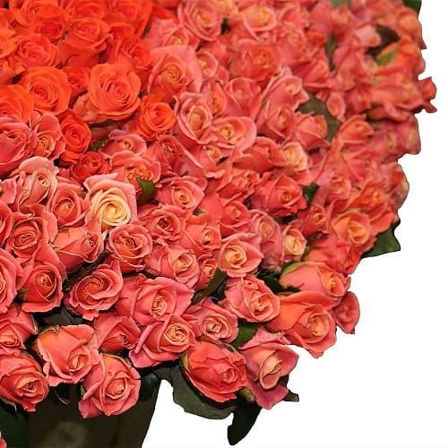 Букеты из 301 розы